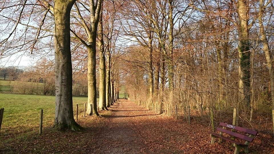 6x genieten in Nederlandse natuurgebieden