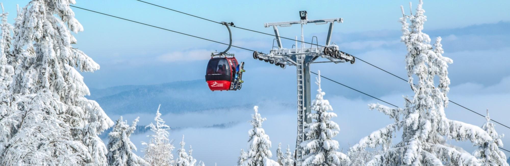 Zakelijke wintersport